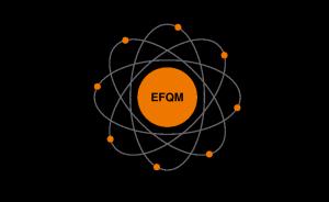 EFQM Modell 2010 1